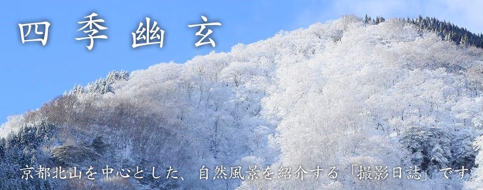 風景写真 ブログ | 四季幽玄 - 滝、紅葉など写真撮影日記